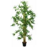 Bambus multi kmen 150 cm