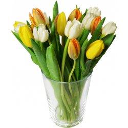 Tulipány mix - nabídka dne :-)