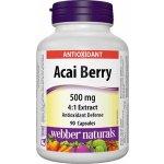 Webber Naturals Acai Berry 500 mg 90 kapslí