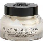 Bobbi Brown Face Care hydratační krém pro všechny typy pleti (Hydrating Face Cream) 50 g