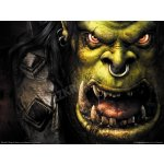 Warcraft 3 (Gold)