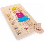 Legler Puzzle vícevrstvé Anatomie dívka 4 vrstvy 28ks