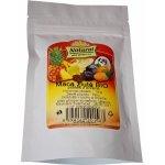 Natural Pack maca peruánská žlutá gelatinized Bio 100 g
