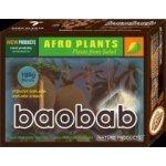 Baobab prášek 100g