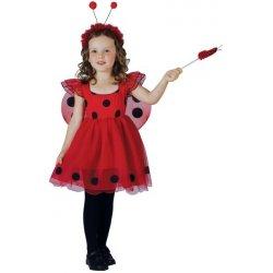 Dětský karnevalový kostým Kostým na karneval Beruška