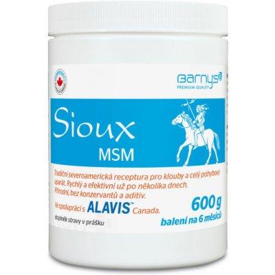 Barny's Barny's Sioux MSM pro lidské klouby 600 g