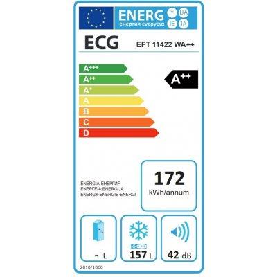 ECG EFT 11422 WA++