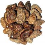 Svět Plodů Raw Kakaové boby Guatemala 1000 g