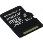 Kingston Canvas Select microSDXC 256GB UHS-I U1 SDCS/256GBSP