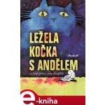 Ležela kočka s andělem a jiné prózy pro dospělé - Jan Velíšek