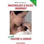 Nastávající a kojící maminky si vaří chutně a zdravě - Hofhanzlová Judita MUDR.