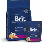 Brit Cat Premium Adult losos 8 kg
