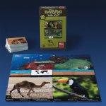Dino Toys Natur Nativa Život zvířat