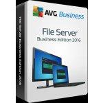 AVG File Server Edition 2013 2 lic. 2 roky DVD (FSCBN24DCZS002)