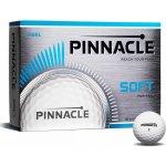 Pinnacle Soft