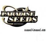 Acid fem Paradise Seeds 5 ks