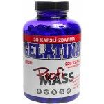 Profimass Gelatina Profi 250 tablet