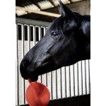Gumový míč pro koně červená