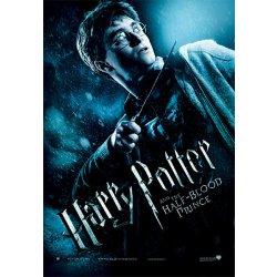 Posters Plakát Obraz Harry Potter A Princ Dvojí Krve Harry With Magic Wand 68 X 98 Cm