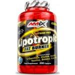 Amix Lipotropic Fat Burner 100 tablet