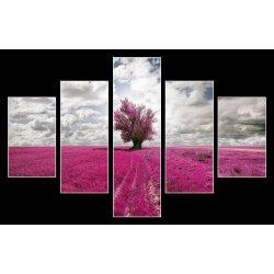 Obraz Obraz na stěnu levandulové pole