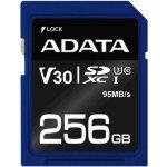 ADATA 256 GB UHS-I U1 ASDX256GUI3V30S-R