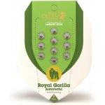Royal Queen Seeds - Royal Gorilla Automatic 1 ks