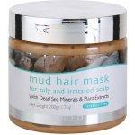 Jericho Hair Care vlasová bahenní maska pro mastnou a podrážděnou pokožku hlavy (With Dead Sea Minerals & Plant Extracts) 200 ml