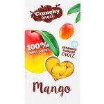 Royal Pharma Mango sušené mrazem 20 g