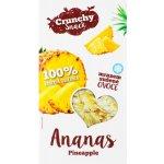Royal Pharma Ananas sušený mrazem 20 g
