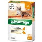 Bayer Animal Health Advantage 40 10% pro kočky do 4kg 4x0,4ml