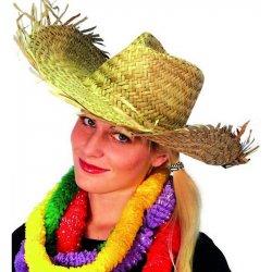 f0a8862cb Karnevalový kostým Slamák Plážový havajský