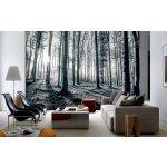 1Wall Vliesová fototapeta Černobílý les 366x253 cm