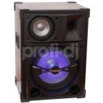 Ibiza Sound SPL15