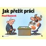 Jak přežít práci - P. Kantorek - Kantorek Pavel