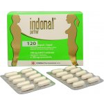 Indonal PARTNER 120tbl
