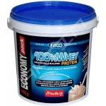 Fitco 100% Whey Protein 4000 g