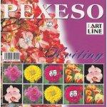 Artline Pexeso: Květiny
