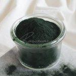 Healthlink Bio Prášek Spirulina 200 g