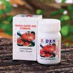 DXN Reishi Gano prášek 15 g