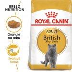 Recenze Royal Canin British Shorthair Adult 10 kg