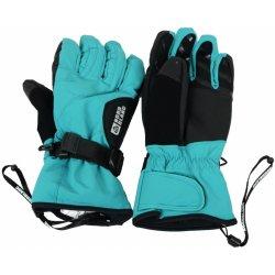 79d7ddfffdd Nordblanc NBWG3948 lyžařské rukavice dámské tyrkysová alternativy ...