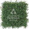 Umělý živý plot BUXUS GREEN, dílec 50 x 50 cm (Zimostráz tmavě zelený)