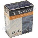 GelitaSpon Standard GS-010 80 x 50 x 10mm 10 ks