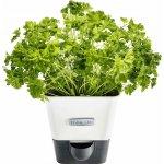 Cole & Mason samozavlažovací truhlík na bylinky na 1 květináč H105249 DKB Household UK Limited
