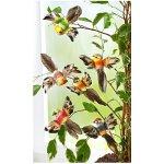 Magnet 3pagen Magnet 6 dekorativních ptáčků