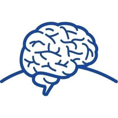 Rozvoj mozku