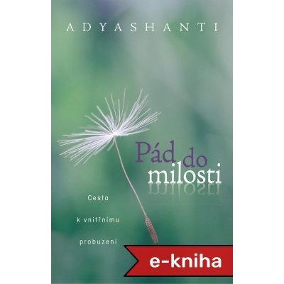 Pád do milosti: Cesta k vnitřnímu probuzení - Adyashanti [E-kniha]