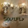 Soulfly - Omen / Limited / CD+DVD [CD / DVD]