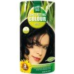 HennaPlus Colour Cream prírodná krémová farba na vlasy 1 Black - čierna 60 ml